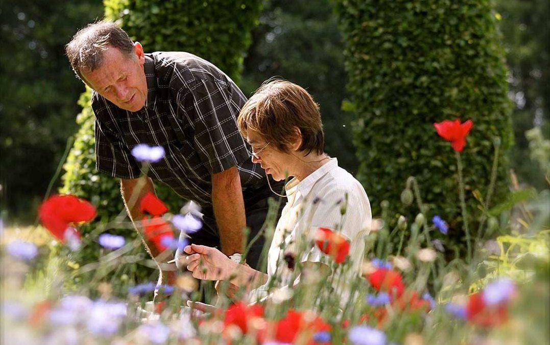Wedstrijd – win een audit van uw tuin