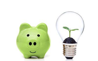 Hoe economie en ecologie combineren?