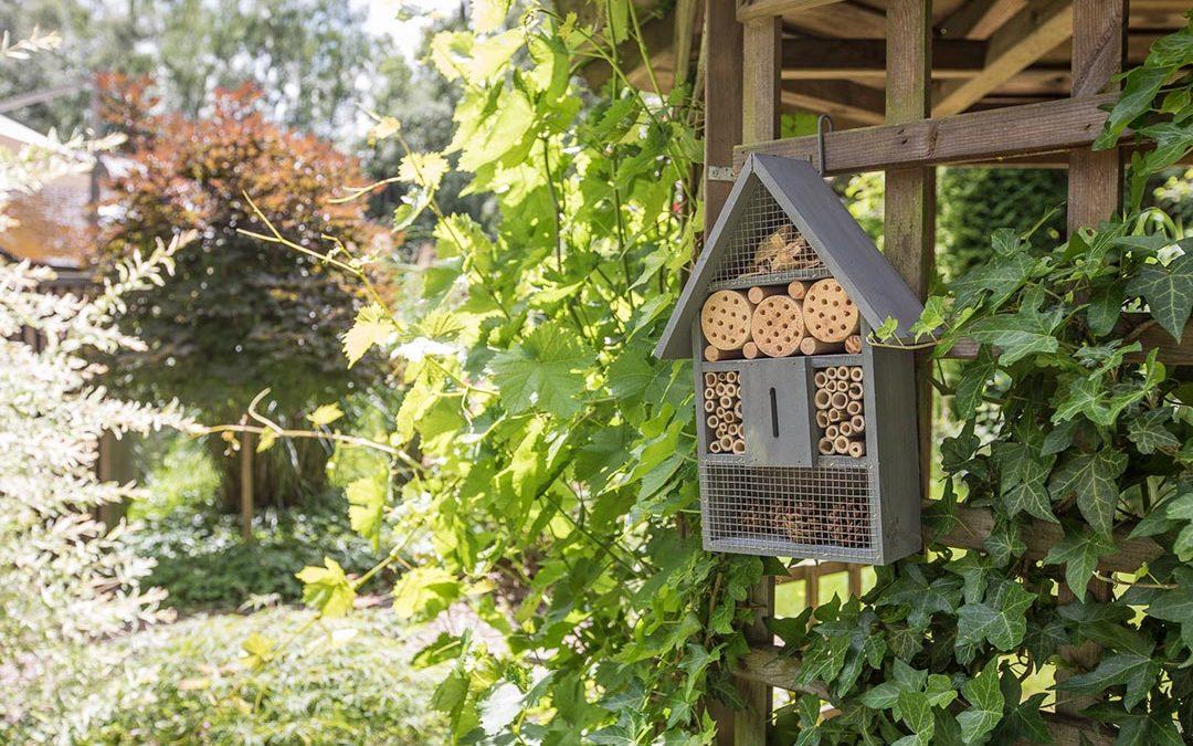 Begin met een insectenhotel.