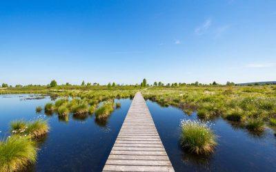 Ecotoerisme: voor welk label kiezen?