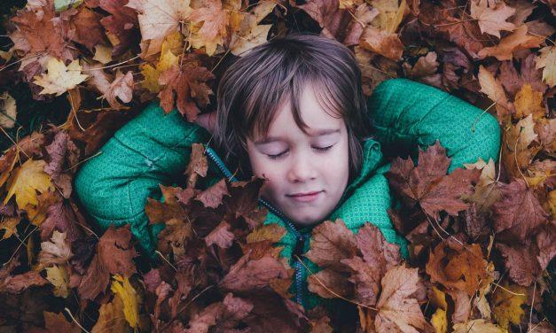 Hoe kinderen respect voor de natuur bijbrengen?
