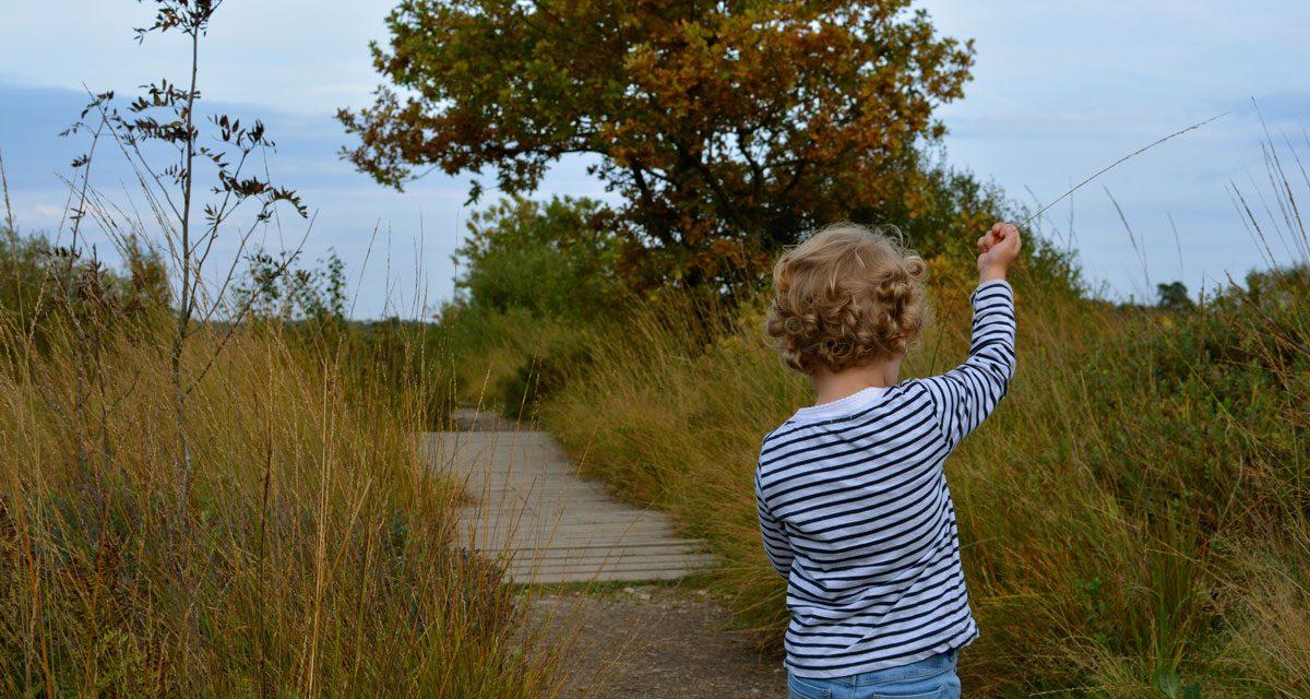 Hoe je kinderen zin geven om te wandelen?