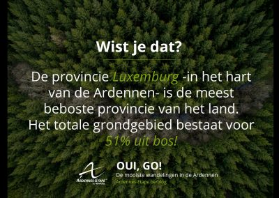 luwembourg-bos