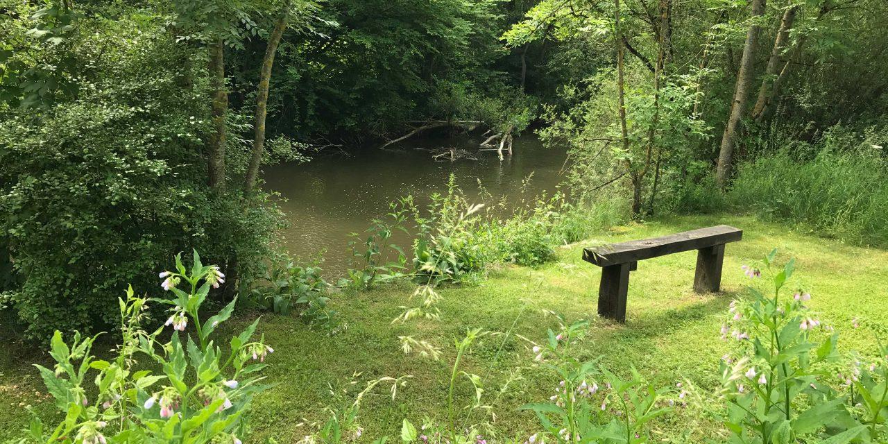 Een wandeling langs de rivier de Lesse