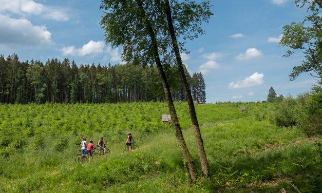 De elektrische mountainbike, een manier om moeiteloos de Ardennen te doorkruisen