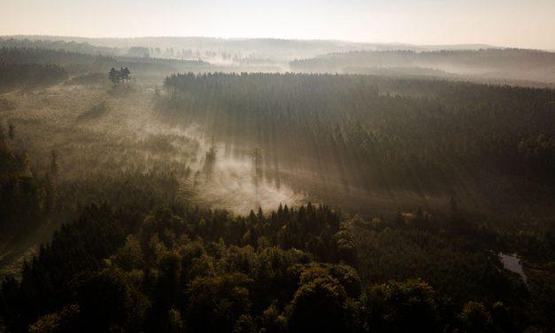 Tips van een blogger om de schoonheid van de Ardennen te ontdekken