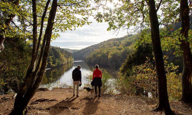 Neem je hond mee voor een wandeling rond het meer van Nisramont