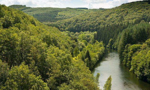 7 dingen die van de Ardennen een onvergetelijke bestemming maken