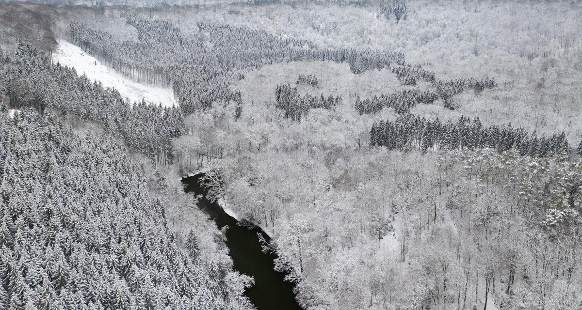 Ontdek 5 mooie sneeuwwandelingen in de Ardennen