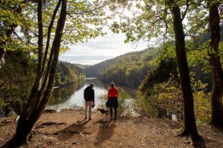 Partez en randonnée avec votre chien autour du lac de Nisramont