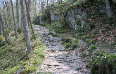 Voettocht: Hérou-Promenades pédestres balisées tot Provincie Luxemburg