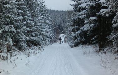 Skipiste van Croix-Scaille-Ski de fond tot Provincie Luxemburg