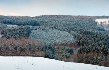 Skipiste van Herzebösch-Ski de fond tot Provincie Luik