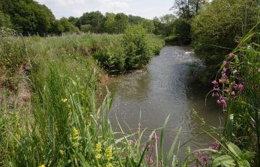 Reservaat van de vallei van de Gueule-Sites naturels tot Provincie Luik