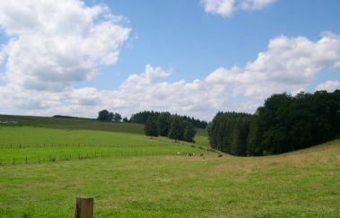 Gouvy-Ville tot Provincie Luxemburg