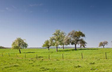 Onhaye-Ville tot Provincie Namen