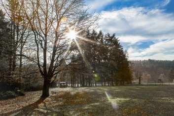 Charmevakantiewoning voor 8 personen in Momignies in het hart van een beschermd bosgebied