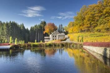 Zeer goed gelegen luxevilla voor 8 personen met wellness in Vielsalm